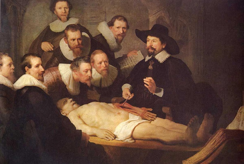 rembrandt-anatomyz